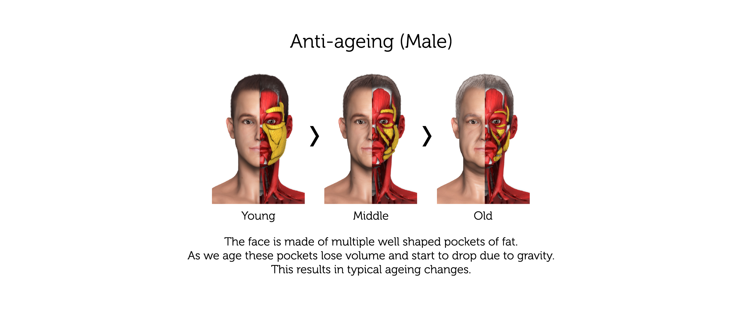 Anti-Ageing (Male)-01